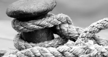 Anchoring your business to the next generation
